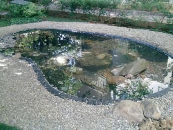 Biyolojik Göller ve Havuzlar