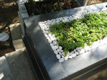 Mezarlık Yeşillendirme ve Bakımları