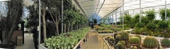 Bitki Oteli
