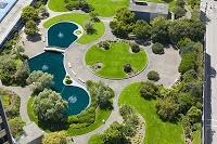 Yeşil Çatı Bahçeleri