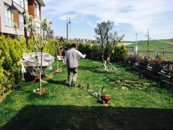 Dekar Asmalı Bahçe